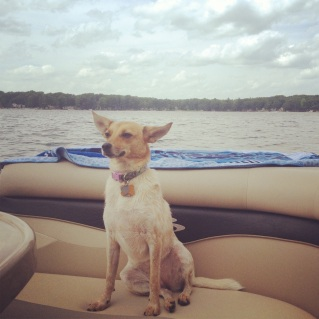 Joy on the Boat